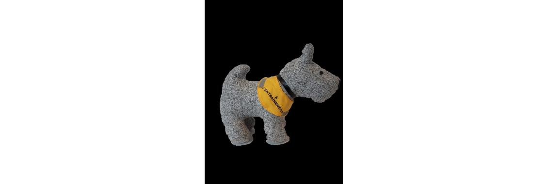 foulard jaune à l'entraînement